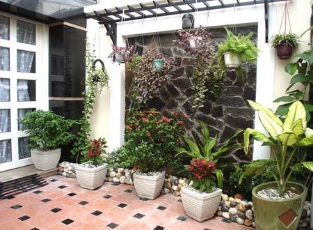 trồng cây xanh quanh nhà